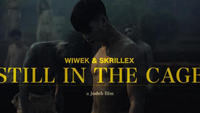 Wiwek & Skrillex 'Still In The Cage' by Jodeb