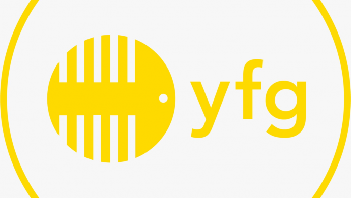 Yellow Fish Group Limited