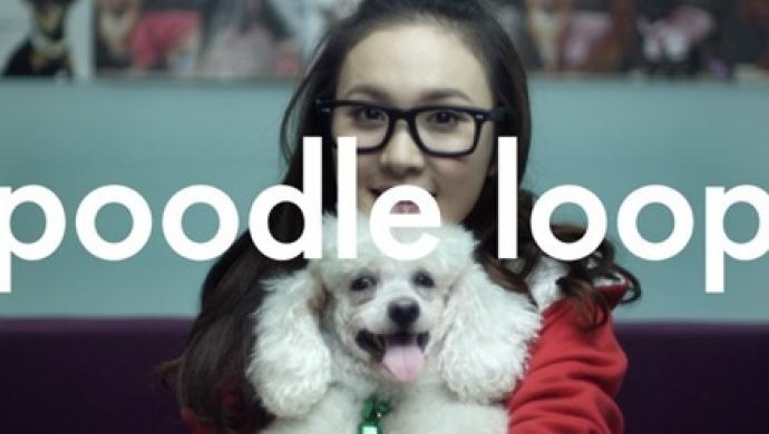 Nokia N8's Poodle Loop by Kim Gehrig