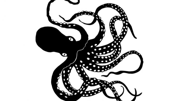 Octopus Inc