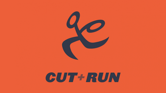 UK Music Video Awards 2018: Cut+Run sponsoring Best Editing in a Video at the UKMVAs