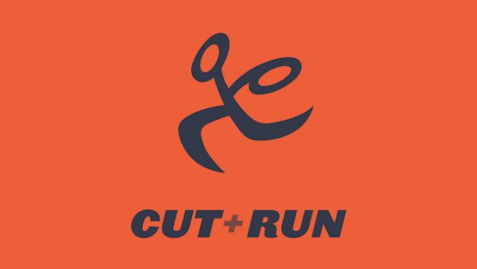 UK Music Video Awards 2017: Cut+Run sponsors Best Editing in a Video at UKMVAs