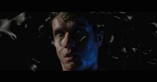 Powell 'Sylvester Stallone' by Trevor Jackson