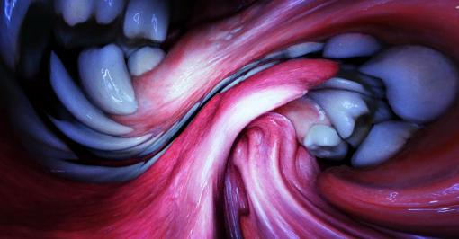 Björk 'Mouth Mantra' by Jesse Kanda